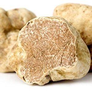 fresh alba white truffle